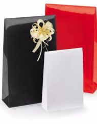 50 pcs Gloss Paper Gift Bags with Adhesive Trip and Block bottom Red, Black or White 10x15,7x4 or14x23x5,5cm (3)